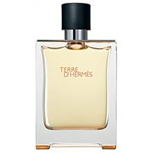 Hermes Terre D´Hermes EdT 100ml Tester